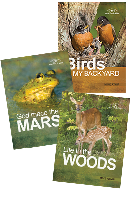 Nature Discoveries Series value pack