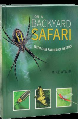 Backyard Safari