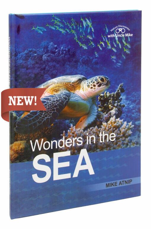 Wonders in the Sea